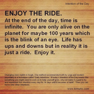 DI32_Enjoy The Ride